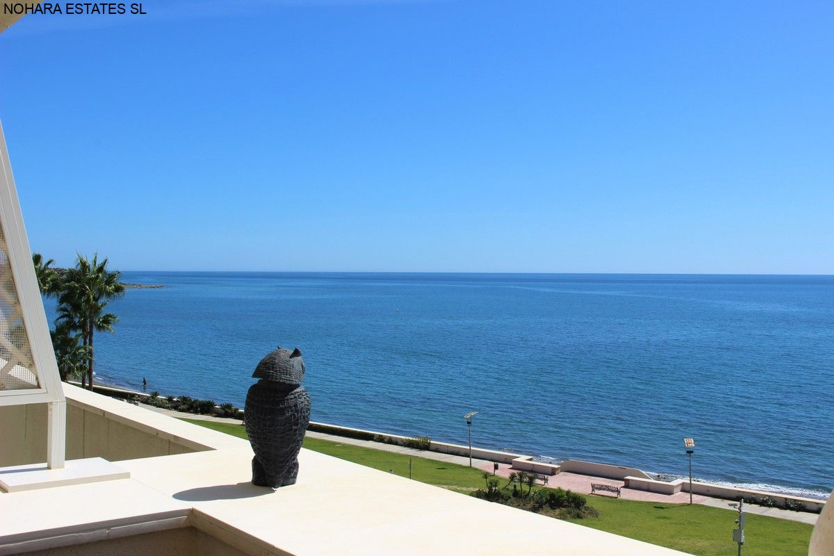 Apartment Estepona  (5)