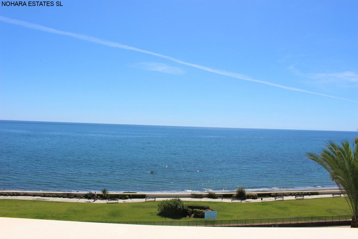 Apartment Estepona  (16)