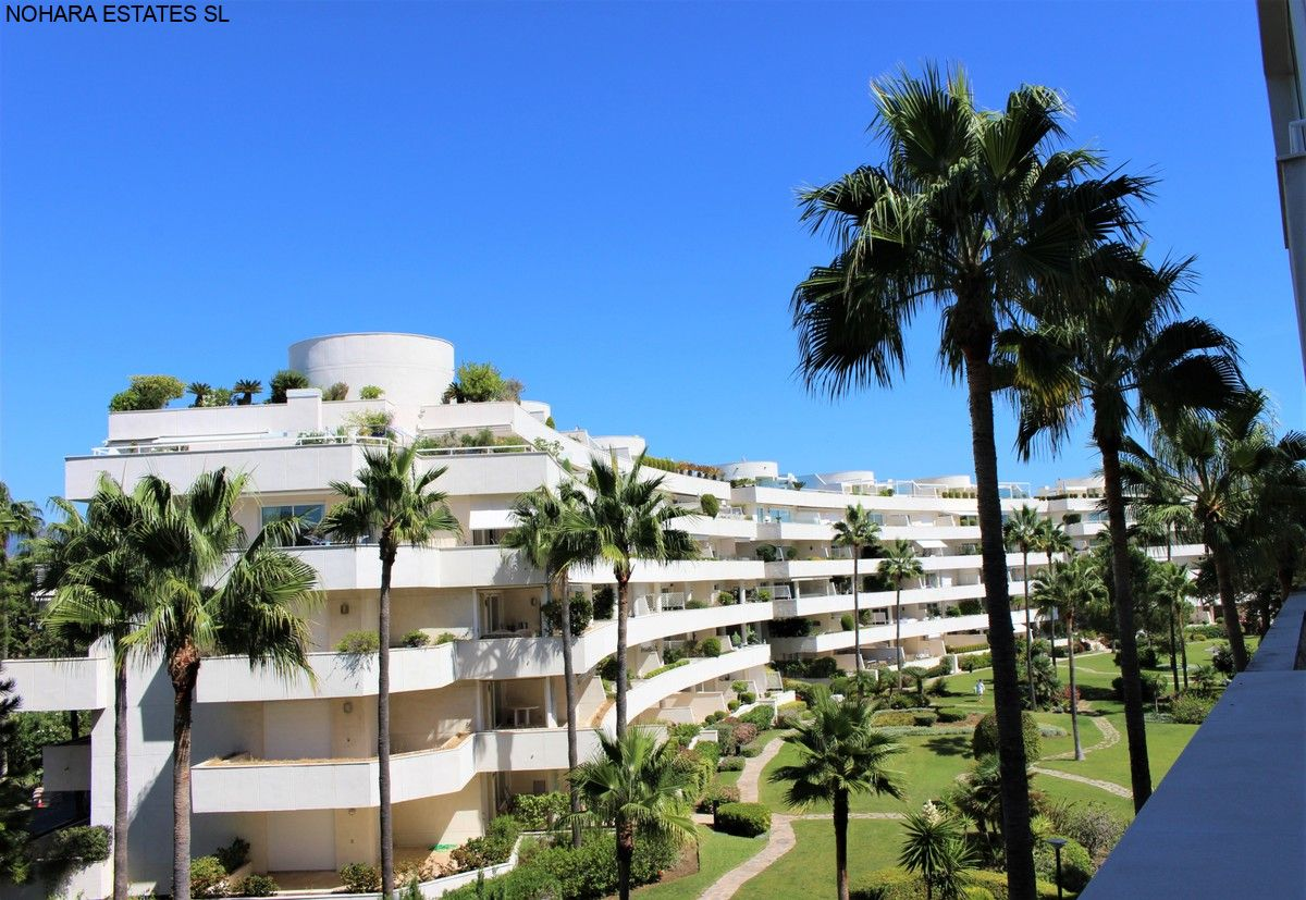 Apartment Estepona  (9)
